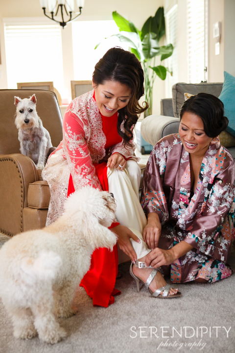 traditional Vietnamese wedding ceremony